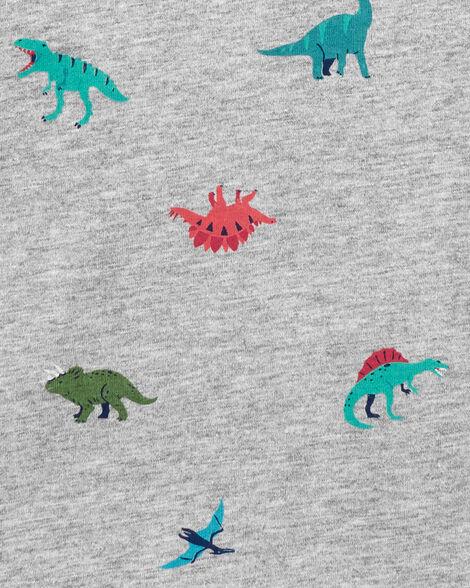 Dinosaur Raglan Henley